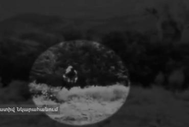 Ոստիկանների այս բացահայտումը ցնցել է բոլորին. Հայաստանում կալանավորվել է զինված ադրբեջանցի (տեսանյութ)